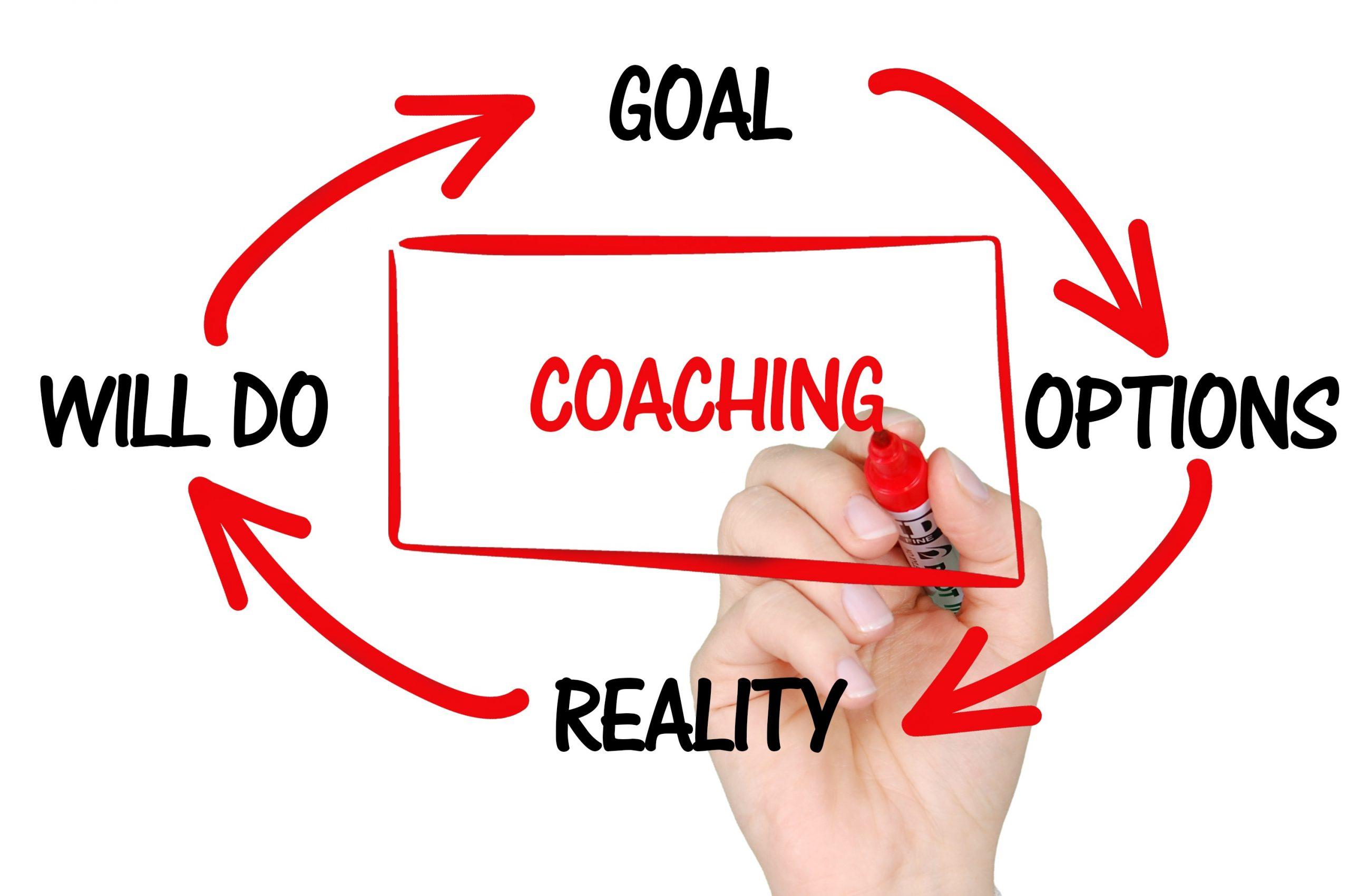 coaching, training, mentoring